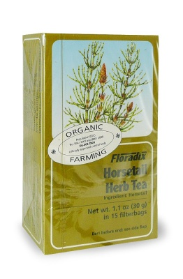 Horsetail 15 Tea Bags